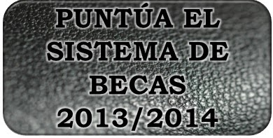 Puntúa el sistema de becas 2013/2014 | Macroencuesta